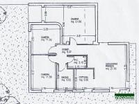 Image for TV 4501 – Affittasi appartamento a Treviso, piano terra con giardino